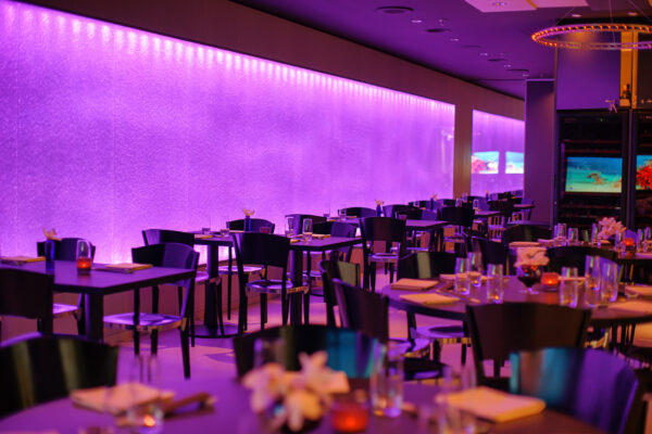 Restaurant Yù, Kursaal, Bern